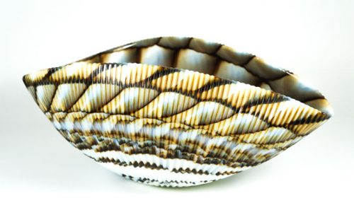 Yalos Murano Glassworks – Shell Centrepiece Bowl (30 cm)